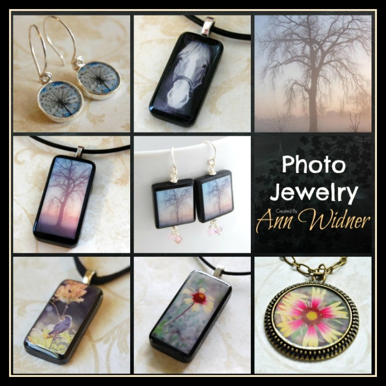 ann photo jewelry board